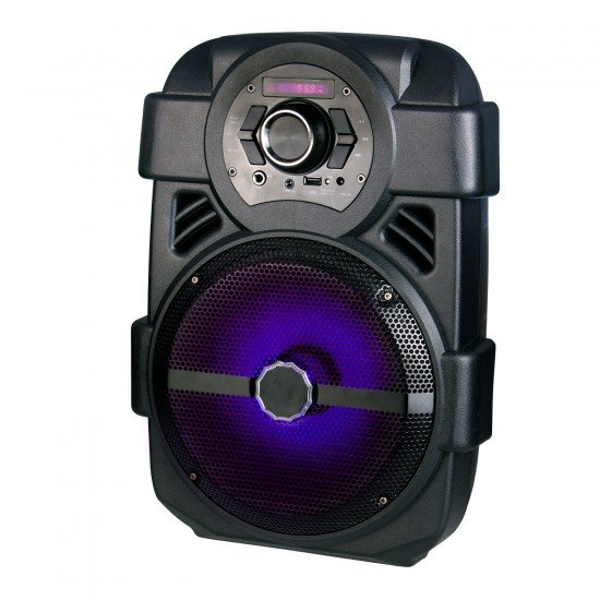 Portable Floor Speaker, Karaoke, USB, BT, FM Radio, MP3 Playback